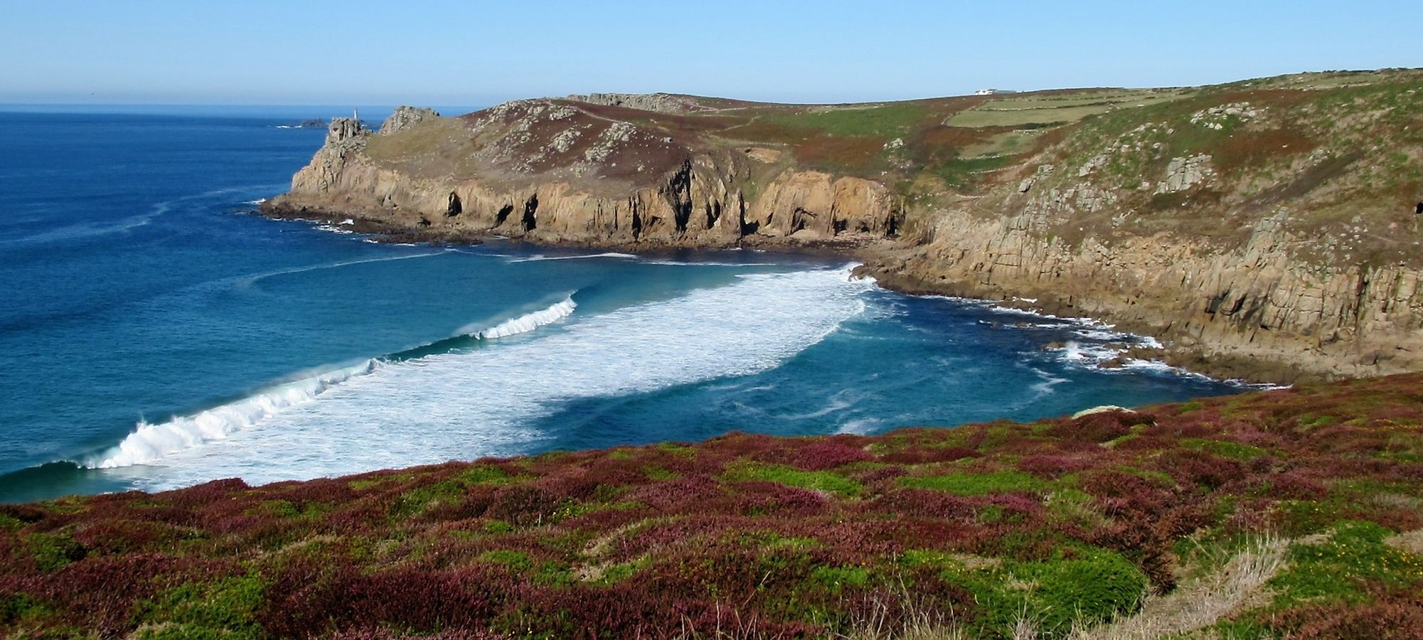 heather and surf on the west coast