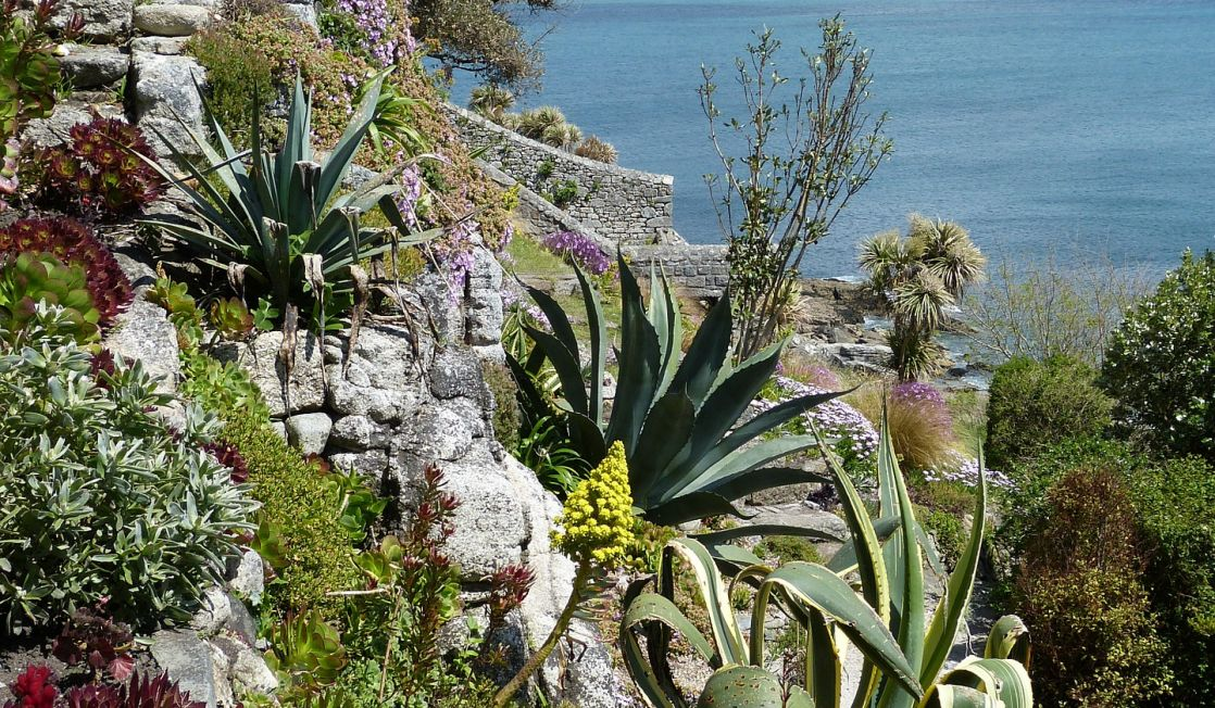 St Michaels Mount gardens